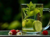 Symbio detox: natürliche Entlastung für Darm und Leber